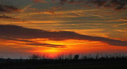 trees sky field clouds sunrise mark træer himmel contrails sonnenaufgang skyer aarhus århus brabrand solopgang skyporn