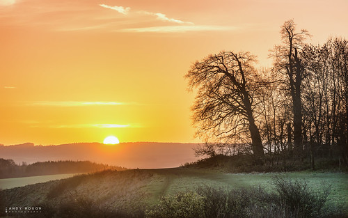 morning trees england sun sunrise landscape golden glow unitedkingdom sony gb goldenhour sonyalpha andyhough southoxfordshiredistrict slta99v andyhoughphotography tamronsp70200di
