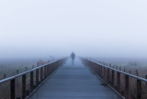 wooden boardwalk burton marshes arty fog foggy wirral cheshire deeside point blur morning mist misty 750d rob pitt photography
