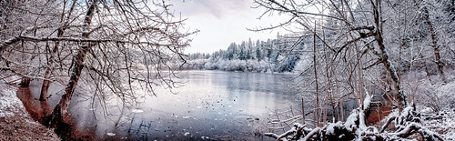 tigermountain traditionlake lake trees panorama winter snow rocks ice landscape