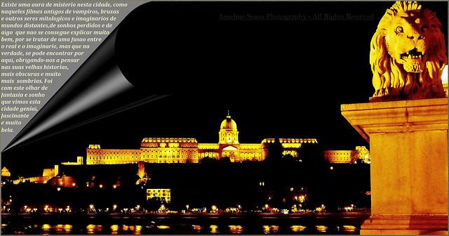 Hungria – Budapeste, esta magnífica cidade banhada pelo Danúbio é uma das maiores e mais atrativas capitais Europeias para a grande maioria dos turistas, no entanto, para nós, Budapeste é, e será sempre a mais bela cidade da Europa…