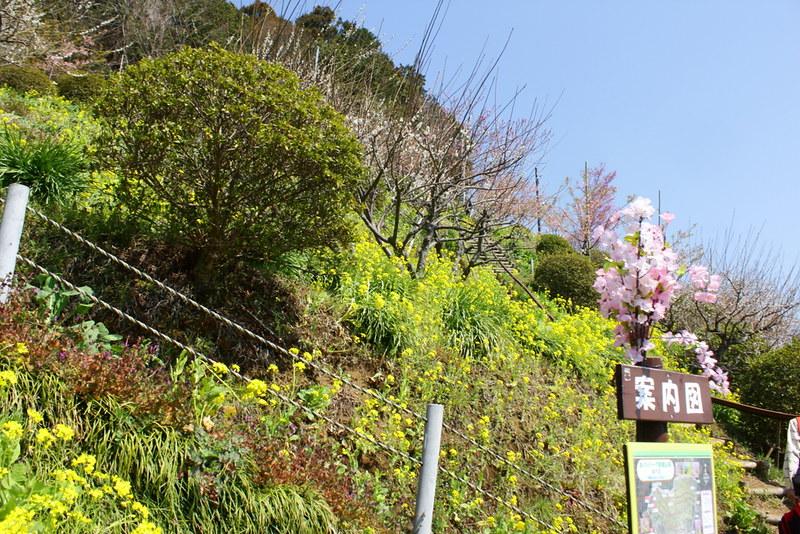 2014-03-16_00093_高松山