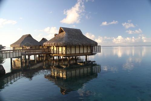Intercontinental Moorea Tahiti 12082011_2969 | by Arnie Papp