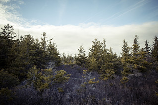 WVBackpacking-18 | by lifeinthedistrict