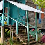 07 Viajefilos en Panama. Isla Bastimentos 15