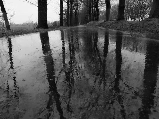 Regen en nog eens regen