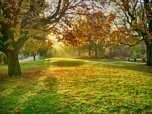 park autumn sunrise hamburg un planten blomen