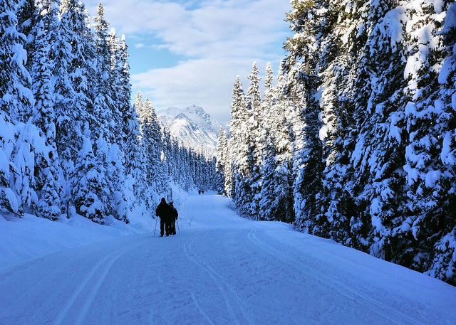 Cross-country skiing along Moraine Lake road