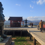 MIYAJIMA,IWASO,HIROSHIMA,JP / 宮島、厳島、岩惣、広島