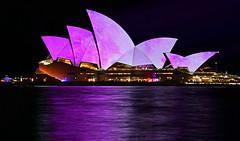 Opera House - 2016