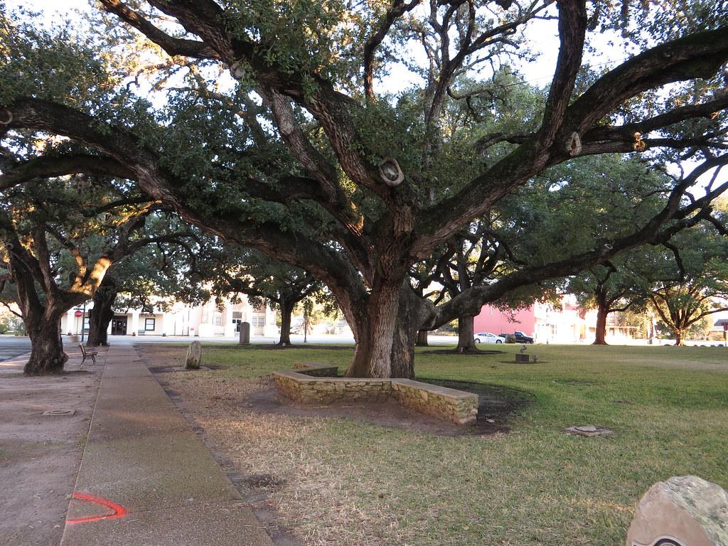 Seven Trees sales tax calculator