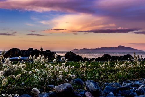 new sunset summer seascape beach clouds sunrise landscape island bay coast zealand wellington coastline kapiti pukerua