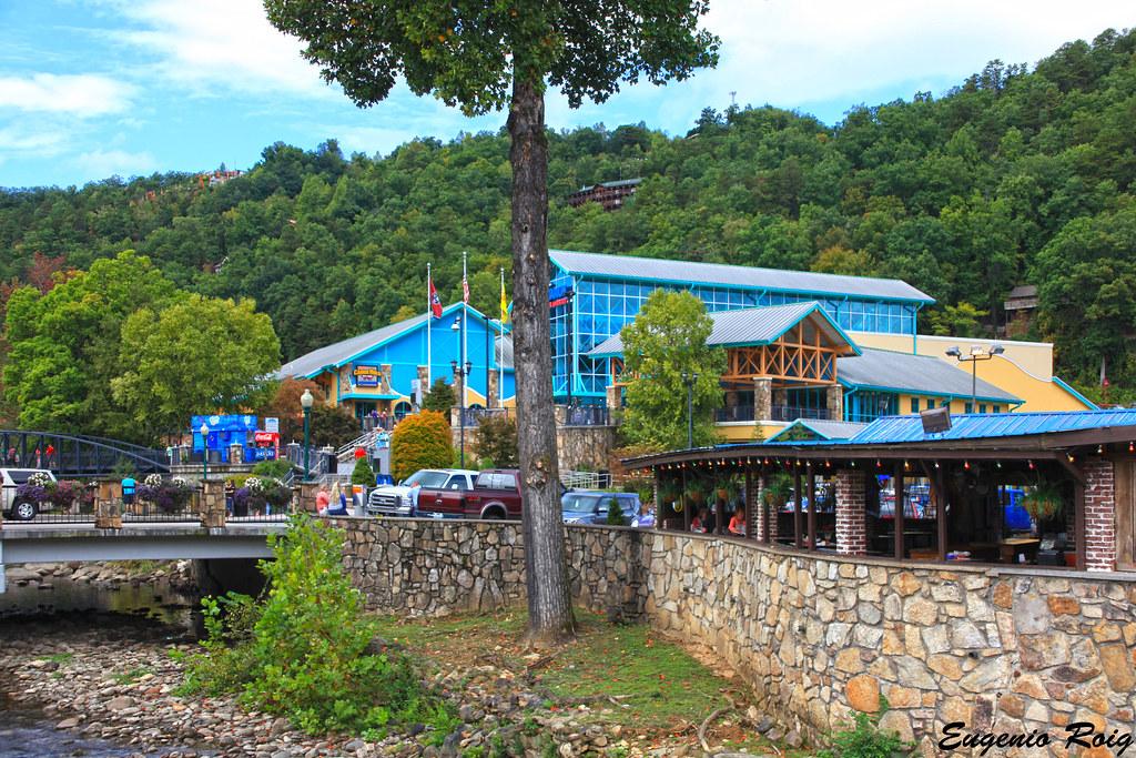 Ripley's Aquarium of the Smokies. Gatlinburg, Tennessee ...