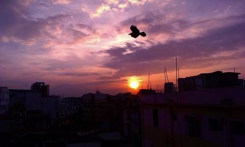 city sky cloud sun black building bird nature beautiful beauty night sunrise natural dhaka bangladesh hdr