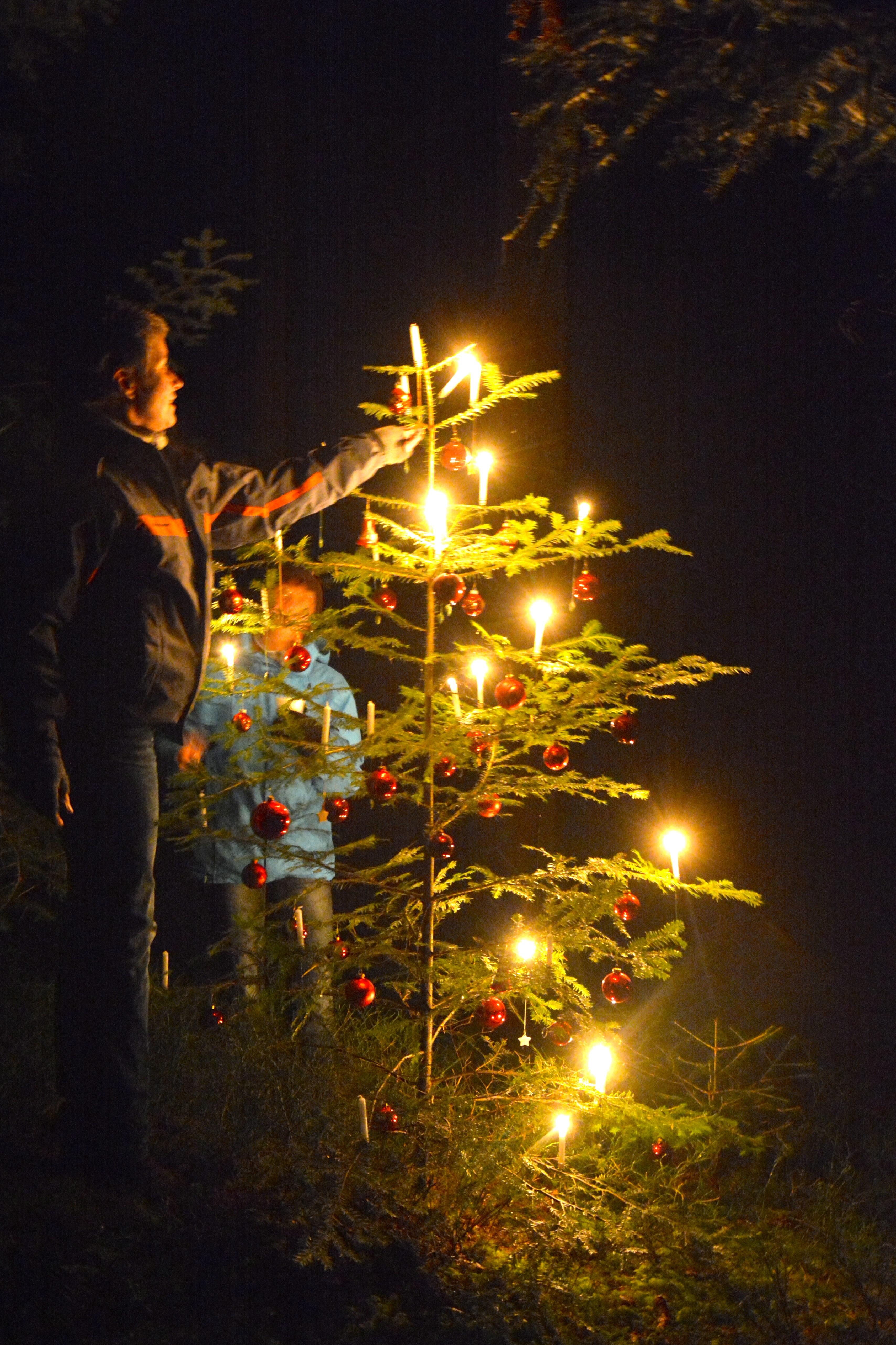 Verein - Waldweihnachten 2014