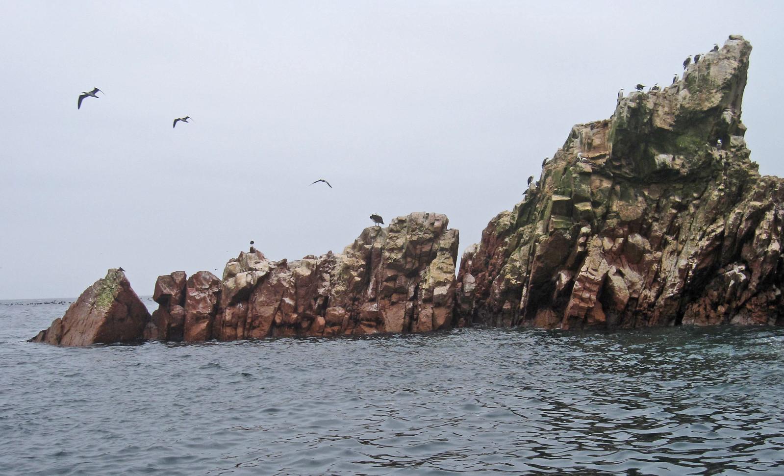 Islas Ballestas 90