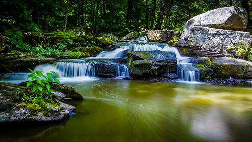 longexposure forest waterfall rocks stream odc signsoftheseason canon1022mmlens leebigstopper