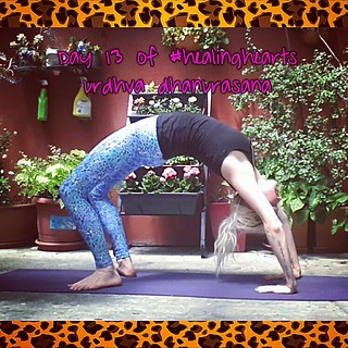day 13 of healinghearts  urdhva dhanurasana/bow or wheel
