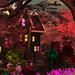 Fry's Toothsome Delight - machinima film set inworld