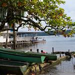 07 Viajefilos en Panama. Isla Bastimentos 05