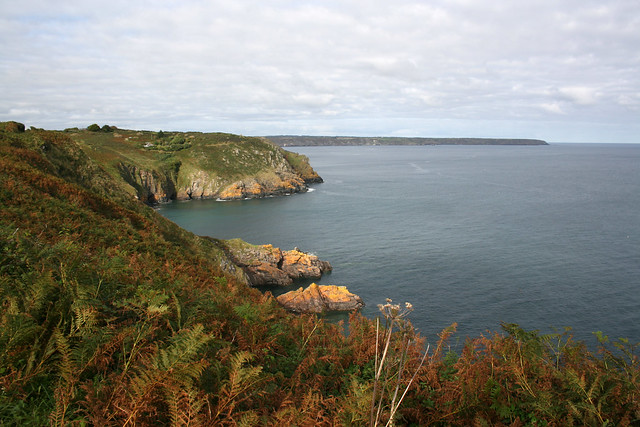 View back towards Cadgwith
