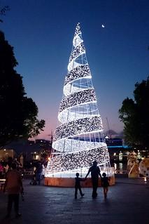 FFF_Christmas_Tree_0097 | by Christopher Yardin
