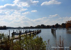 Rio Vista community dock, © Dick Cooper