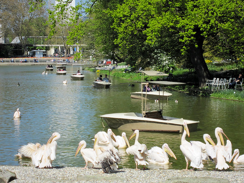Karlsruhe Tiergarten
