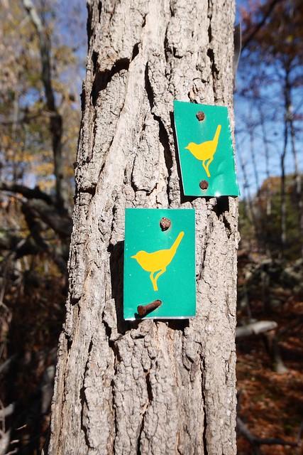 日, 2014-10-12 11:34 - Sterling Forest State Park