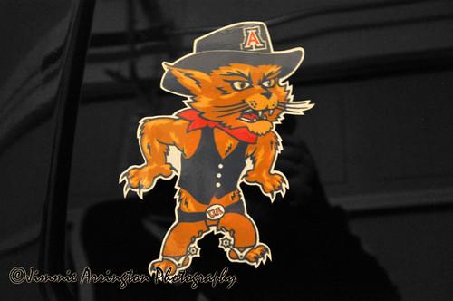 The Wildcats 323/365