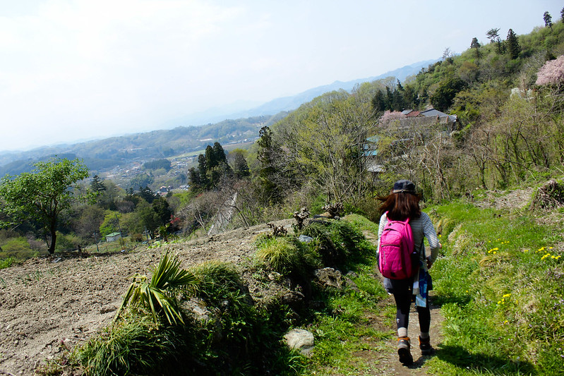 2014-04-19_00379_美の山.jpg