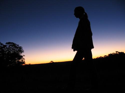 sunset silhouette dorrigo tyringham