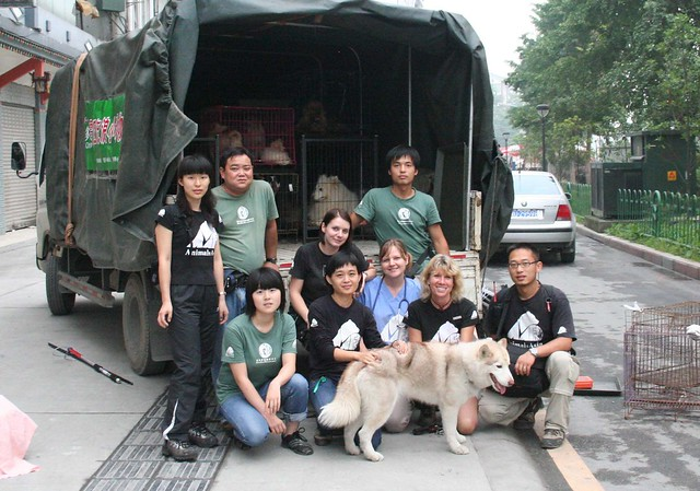 Earthquake AAF team in front of truck DJY dog rescue