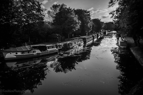 bw white black reflection tree water monochrome sunrise boat canal scenery kirkstall barge
