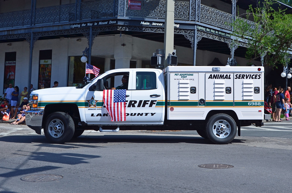 LCSO Animal Services 6988