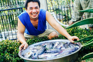 Philippines: 660 pounds of fish harvested at fishery project; solar power to be installed | by Peace Gospel