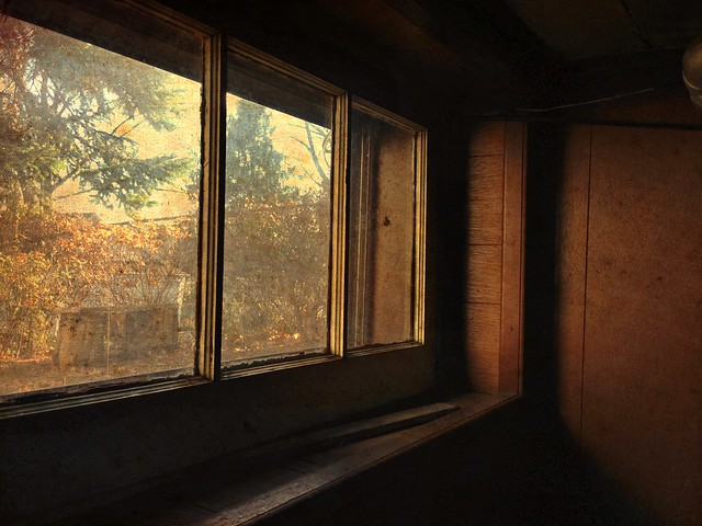 End of Autumn, Thru the Basement Window