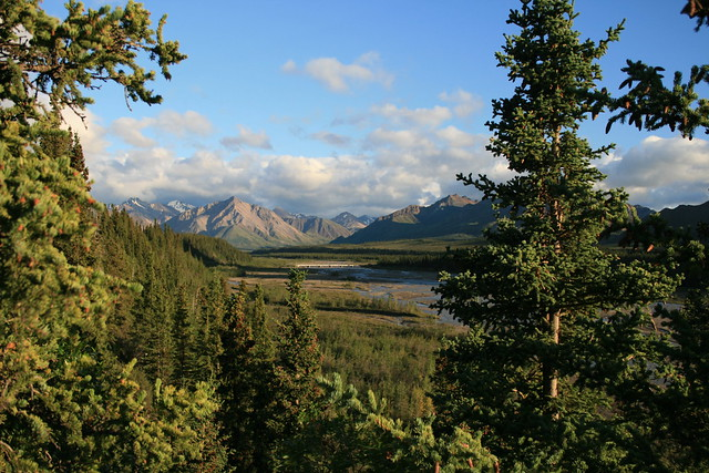 View of the Teklanika River and the Alaska Range in the Distance, Denali National Park, Alaska