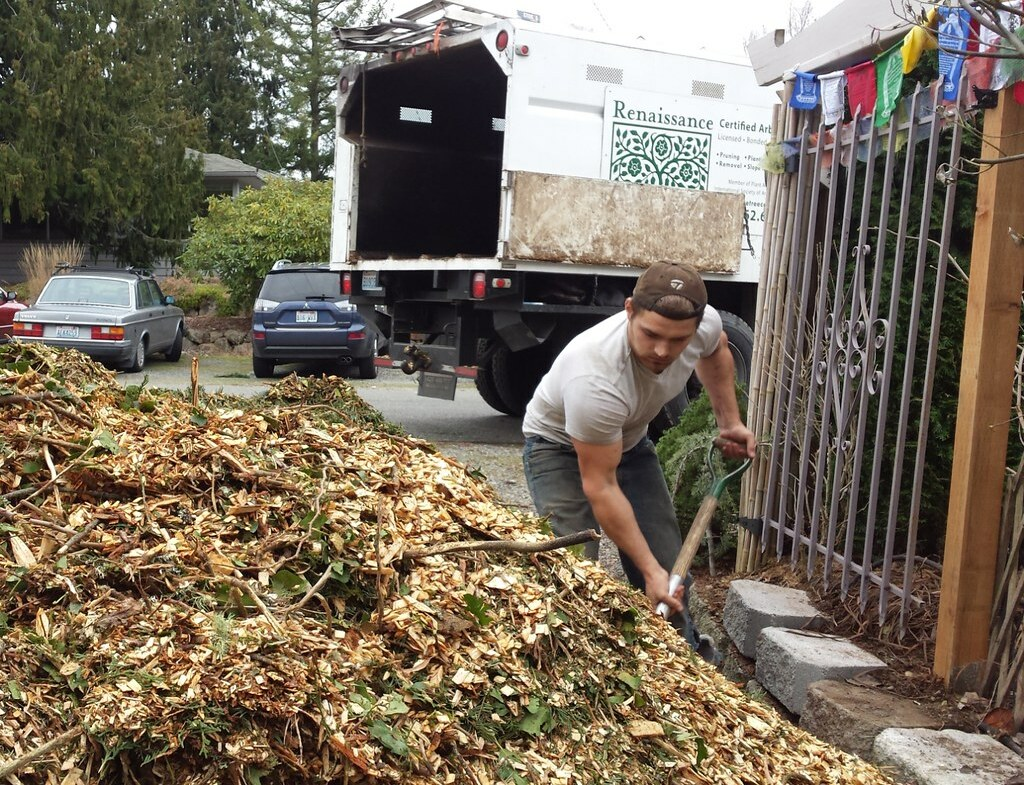 Renaissance Certified Arborist company delivering wood chips for recycling by mulching the garden and back yard, fence, prayer flags, Old fence from Pioneer's Square, Seattle, Washington, USA