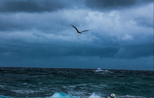 playa santa maria-los cabos-mexico-0913