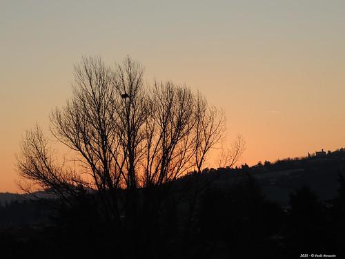 sky italy sunrise alba cielo emiliaromagna zolapredosa