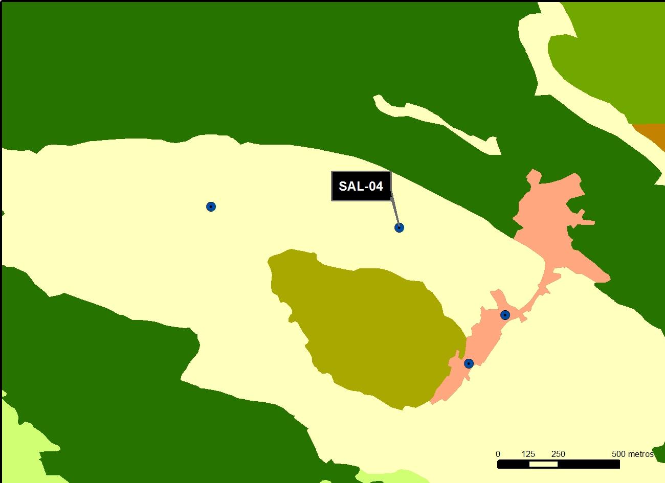 SAL_04_M.V.LOZANO_COLMENILLA_MAP.VEG