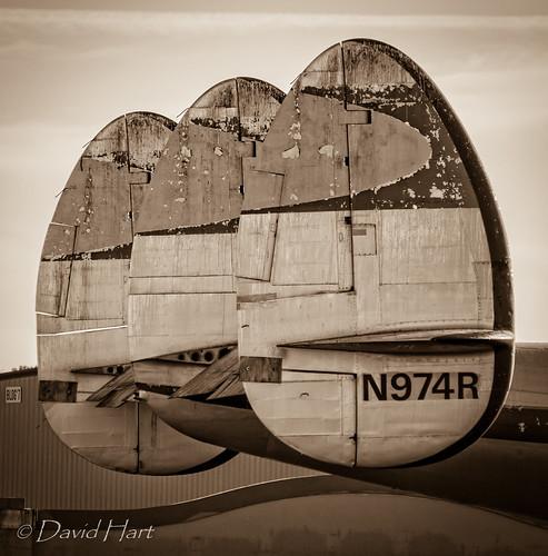 DSC_4501 | by dwhart24