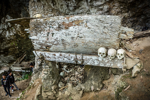 Human skulls and coffin in Torajan burial site - Londa cave in Sulawesi, Indonesia   by Phil Marion (173 million views - THANKS)