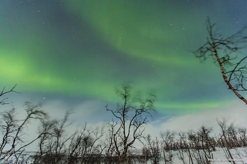 Auroras Boreales en Noruega-58 | by luisete