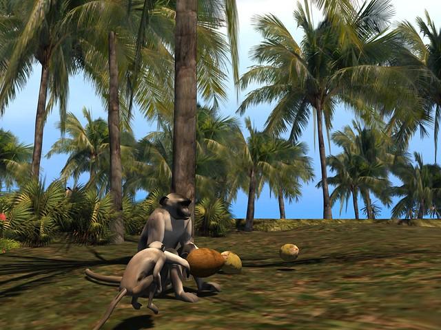 Lick's Tropical Rainforest - Languar Coconut Feast