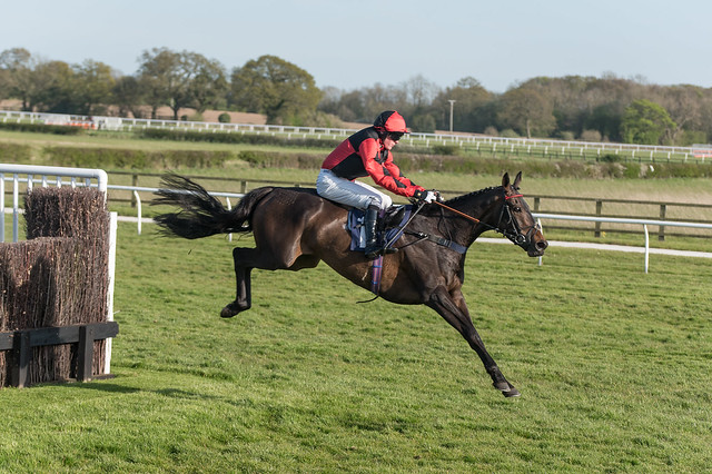 A tremendous jump, Atlantic Gold down the back straight at Wetherby