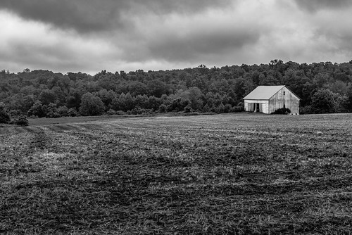 trees bw usa texture barn landscape blackwhite spring nikon unitedstates outdoor pennsylvania farm country farmland explore lancaster lancastercounty farmlife pennsylvaniadutchcountry