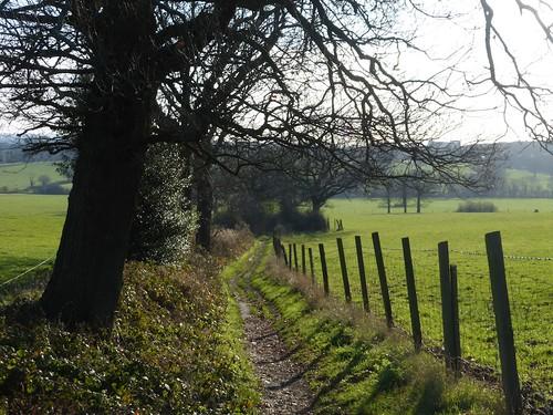 Looking back down the hill (para 28) Totteridge Circular walk