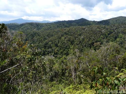 Vue de la réserve | by olivier.reilhes